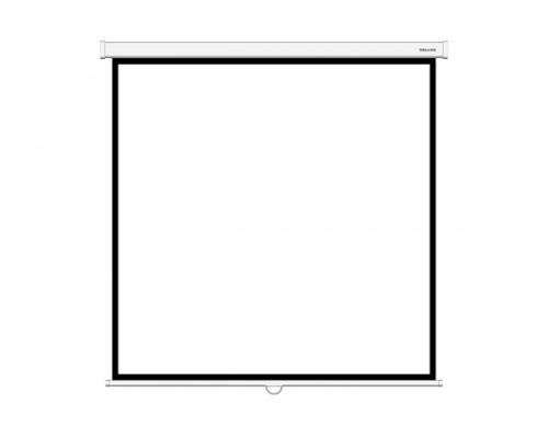 Проекционный экран  Deluxe, Настенный, DLS-M203xW, 203x203, Matt white, Белый